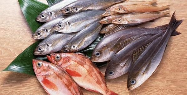 Cá chứa hàm lượng thuỷ ngân cao có thể gây ảnh hưởng đến hệ thần kinh của trẻ