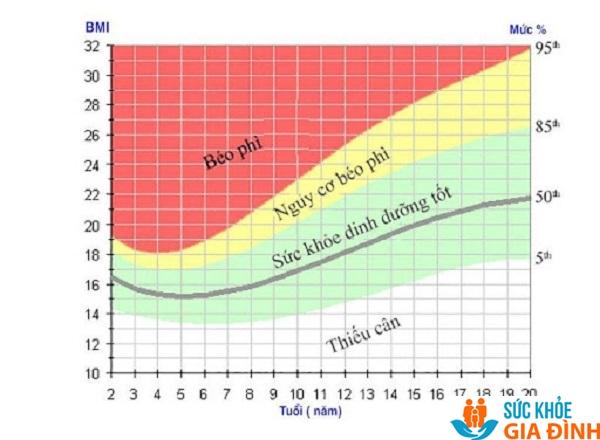 Biểu đồ chỉ số BMI theo tuổi của trẻ em