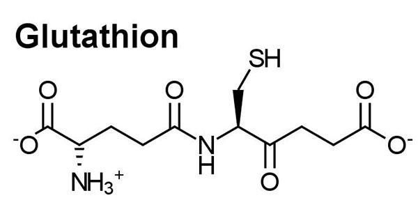 Glutathion là chất oxy hóa mạnh nhất cơ thể
