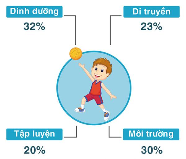 Chiều cao phụ thuộc vào rất nhiều yếu tố và dinh dưỡng ảnh hưởng cao nhất, lên tới 32%